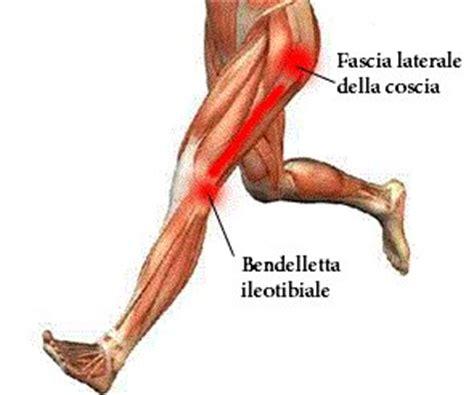 dolore al ginocchio interno dolore al ginocchio laterale le cause e la soluzione