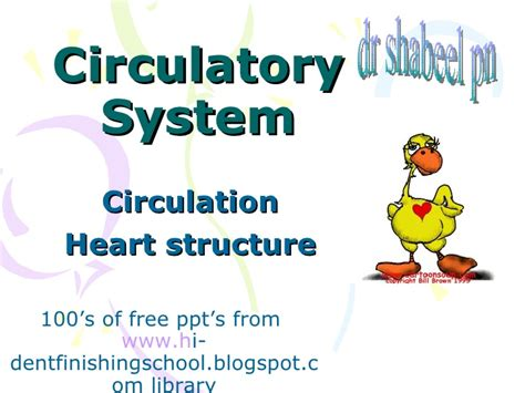 Circulatory System Powerpoint Download Reofesk Circulatory System Powerpoint