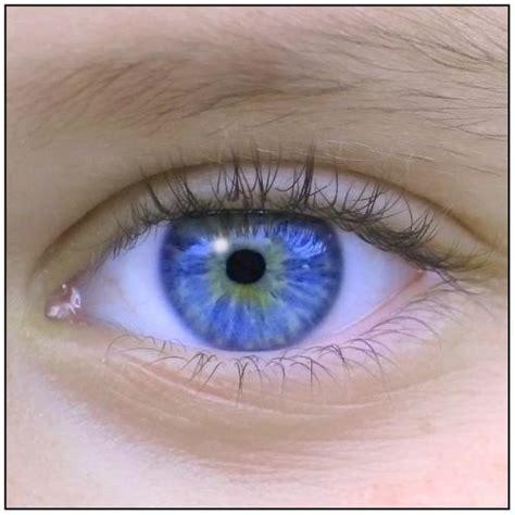 imagenes de ojos expresivos catchlight el brillo de los ojos jggweb el blog de