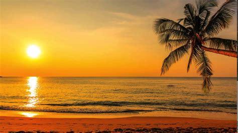 camara oculta en la playa una parejita espiada en la playa cuantosexo