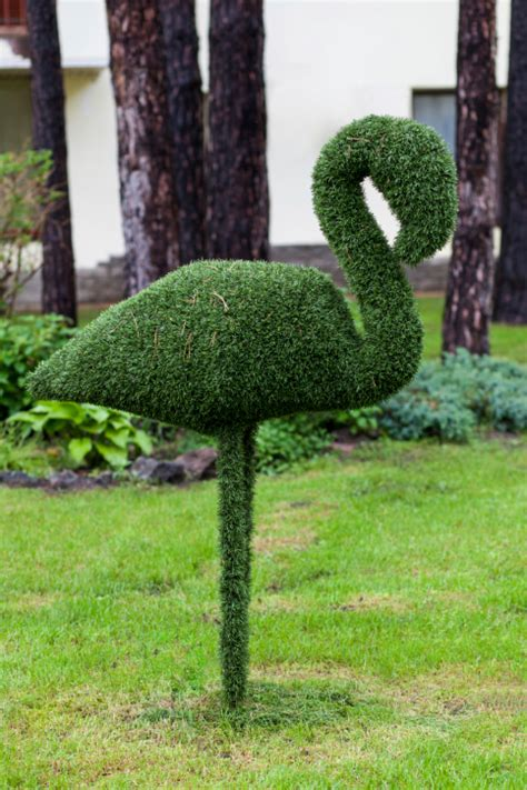swan topiary 53 stunning topiary trees gardens plants and other shapes