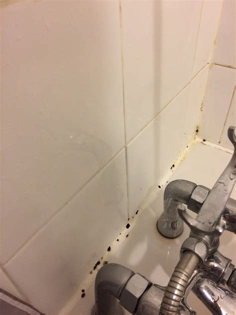 removing silicone from bathtub removing silicone from bathtub 28 images how to caulk