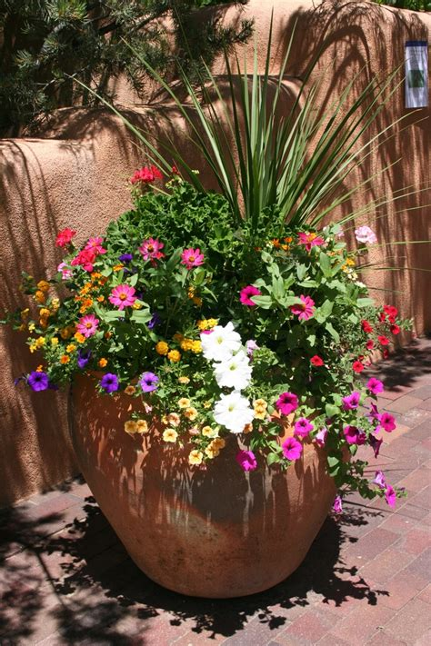Planter Ideas Sun by Sun Taos Pot Gardening Container