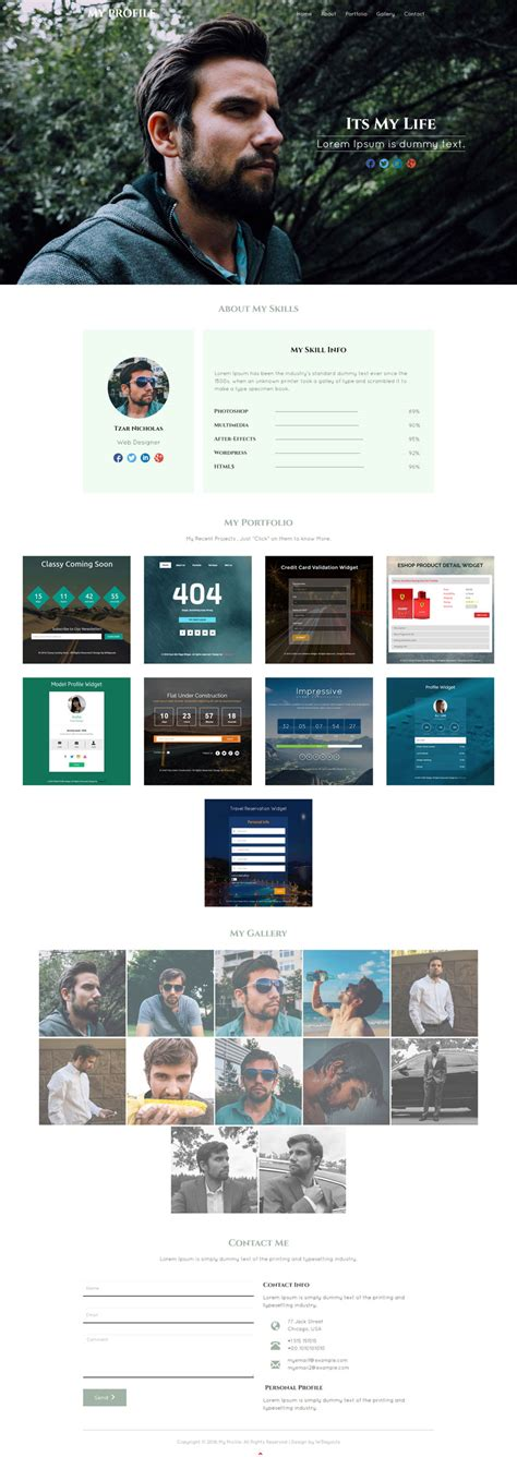 My Profile A Personal Portfolio Category Bootstrap Responsive Web Template Profile Website Template