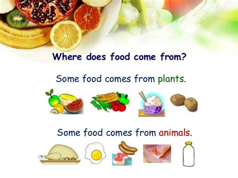 where does come from food summary kah
