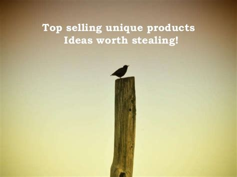 unique product ideas top selling unique products ideas worth stealing