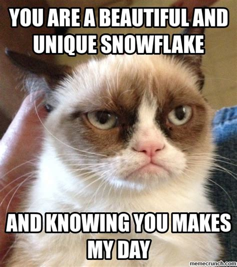 You Are Beautiful Meme - you are a beautiful and unique snowflake