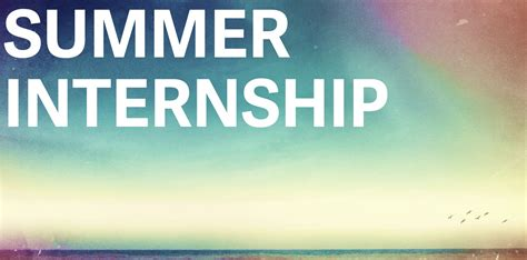 summer intern five things you must do before hiring interns
