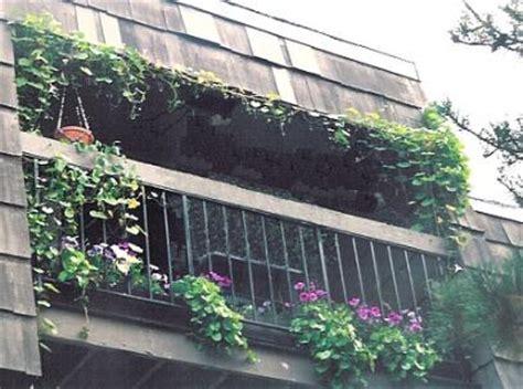 Apartment Patio Bird Feeder Balcony Tinkering