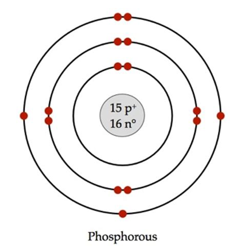 bohr diagram of phosphorus the gallery for gt phosphorus bohr model