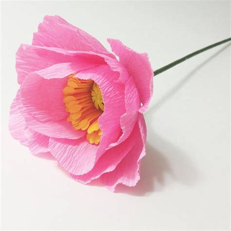 crepe paper poppy light pink crepe paper flower paper