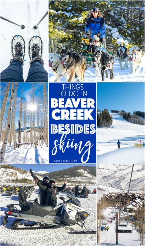 9 Things To Do Besides Tv by Things To Do In Beaver Creek Co Besides Skiing Plain