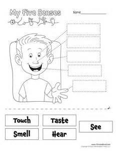 five senses worksheet tim van de vall