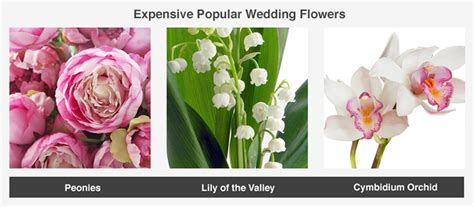 Wedding Flower Prices by Average Cost Of Wedding Flowers Valuepenguin
