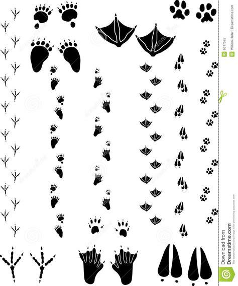 tattoo animal tracks black bear track pattern bing images life of flynn