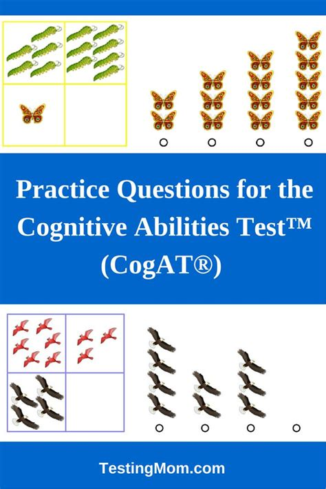 gifted and talented cogat test prep gifted test prep book for the cogat level 7 17 best images about gifted and talented testing on