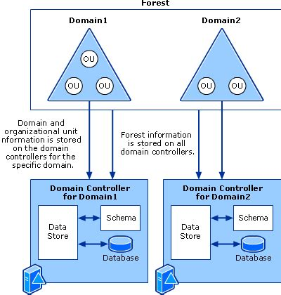 active directory structure diagram active directory architecture diagram active free engine