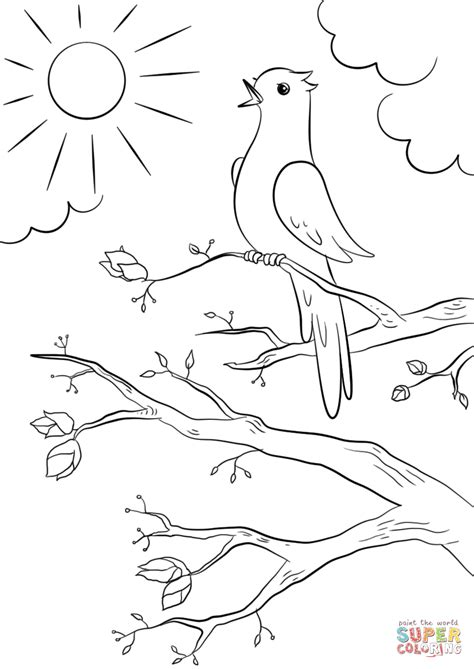 spring bear coloring pages 100 coloring pages of spring download coloring