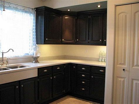 Black Paint For Kitchen Cabinets Kitchen Cabinets Colors Quicua