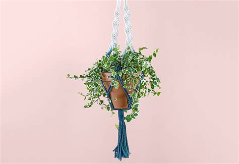 How Do You Make A Macrame Plant Hanger - how to make a macram 233 plant hanger ftd