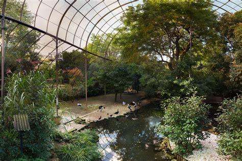 m 233 nagerie le zoo du jardin des plantes mus 233 um national