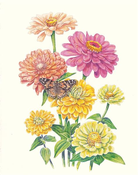 zinnia tattoo designs 152 best botanique images on botanical