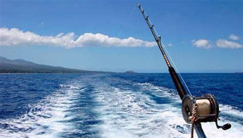 decreto ministeriale  luglio  pesca sportiva pesca sportiva nautica report