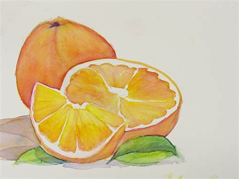 painting fruit in watercolor orange sweetbriar