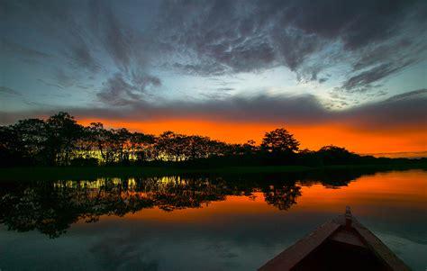 amazon de amazon rainforest ecosystem
