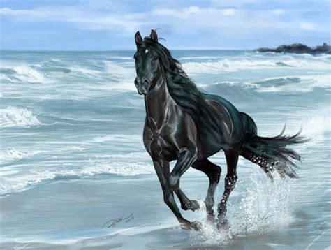 imagenes de paisajes salvajes hermosas im 225 genes de caballos salvajes fotos de animales