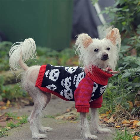 iheart dogs i skull knitted jumper by willieratbag notonthehighstreet