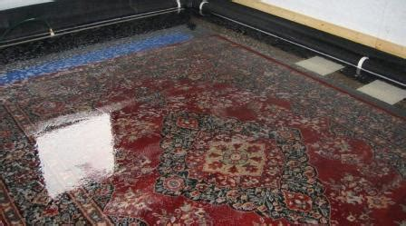 can you steam clean area rugs area rug cleaning steam green carpet cleaning