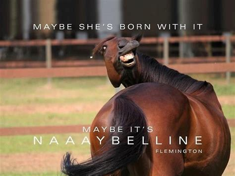 Meme Horse - lol funny meme maybelline horse girls and their horses