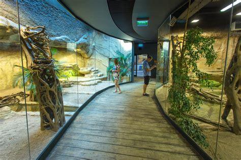 zoologischer garten breslau zoo in wroclaw visitwroclaw eu
