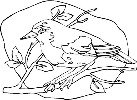 coloring page robin robin coloring pages to print coloring pages
