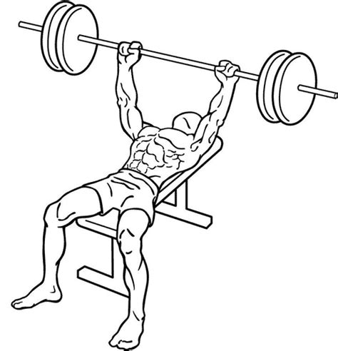 bench press workout for strength bench press chest exercises exercise guides