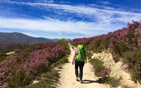 Camino De by 5 Things To Before Hiking Spain S Camino De Santiago