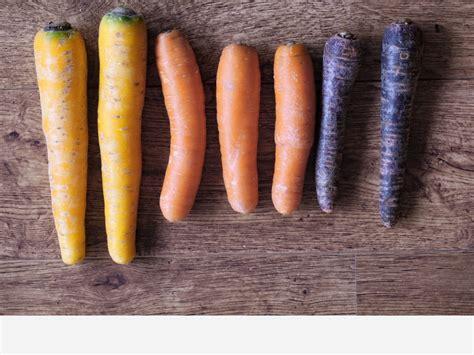 corso cucina vegetariana cucinanatura