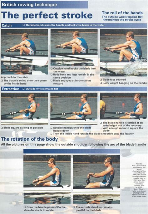 sculling boat positions utm rowing team technique