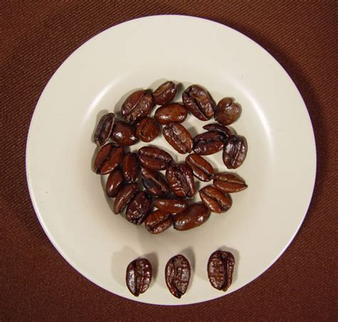 Liberica Coffee file liberica coffee beans roasted jpg wikimedia commons