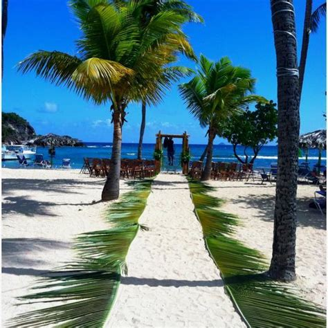 Wedding Aisle With Leaves by Wedding Create An Aisle With Palm Leaves 2063611
