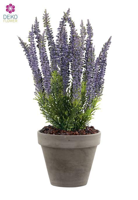 erika pflanze k 252 nstliche erika pflanze lavendel 34cm im tontopf