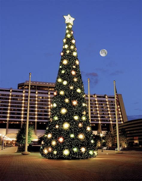 christmas tree at disney s contemporary resort