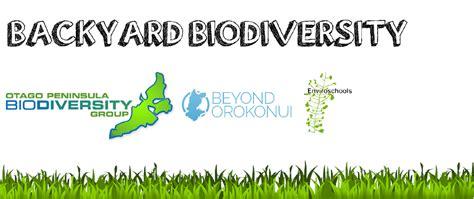 backyard biodiversity backyard biodiversity dunedin 183 inaturalist org