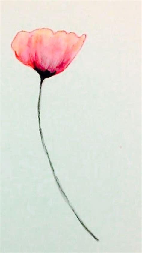best of popy poppy flower watercolor www imgkid the