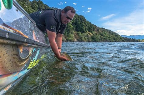 u boat new zealand top 10 adventure things you can only do in new zealand