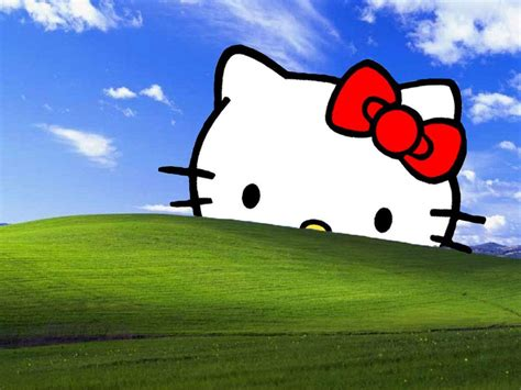wallpaper computer kitty hello kitty backgrounds for laptops wallpaper cave