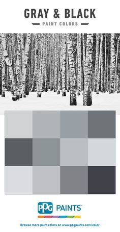 gray amp black paint colors by ppg paints gray and black