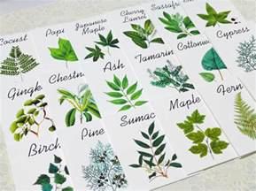 50 best table name ideas for weddings emmaline bride 174
