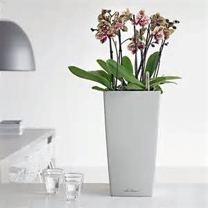 Indoor Modern Planters by Office Planters Amp Modern Indoor Planters Planters Unlimited